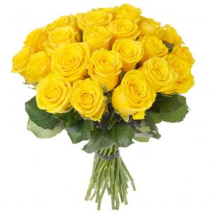 Розы Кения желтые
